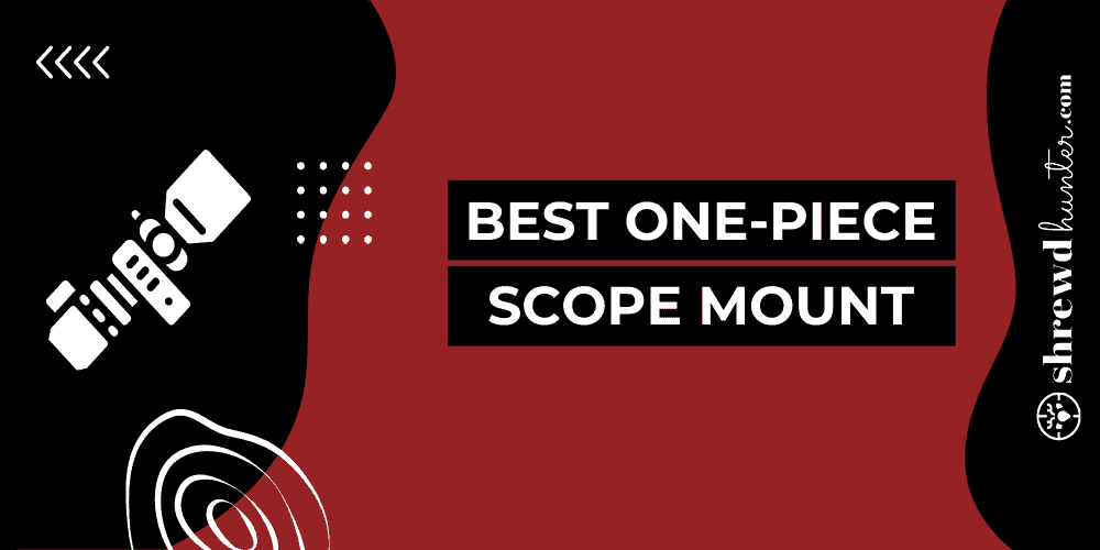 Best One-Piece Scope Mount
