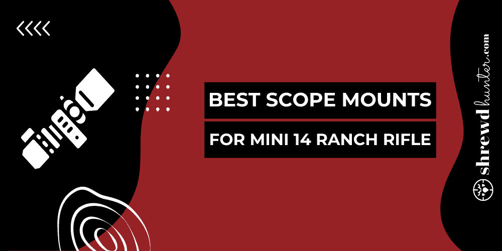 Best Scope Mounts For Mini 14 Ranch Rifle