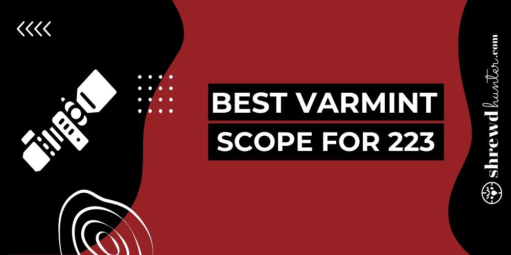 Best Varmint Scope For 223